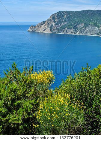 Panoramic view of the coastline near Monterosso one of the