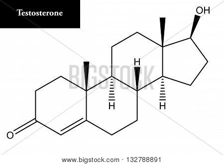 Molecular structure of Testosterone. Testosterone is a steroid hormone from the androgen group