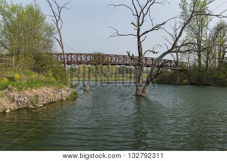 A footbridge crossing part of a lake during spring.