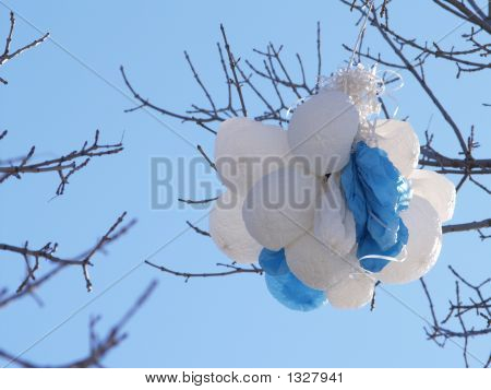 Balloons Deflated In Tree Branches