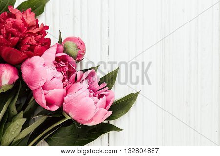 Fresh peonies flowers with dew drops on white wooden background copy space selective focus