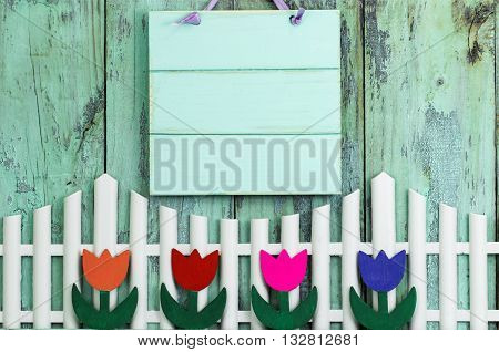 Blank mint green wood sign hanging over white picket fence with row of colorful spring flowers on antique rustic wooden background; purple, pink, orange, red tulips