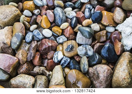 Wet sea stones background, different shapesa nd colors