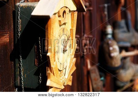 antique old style retro object assemblage on a wooden wall. Cuckoo clock