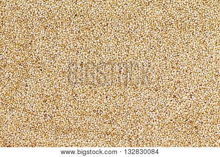 Background Texture Of Healthy Quinoa Grain