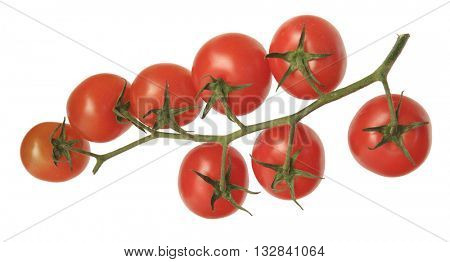 A BUNCH OF EIGHT CHERRY TOMATOES ISOLATED ON WHITE BACKGROUND