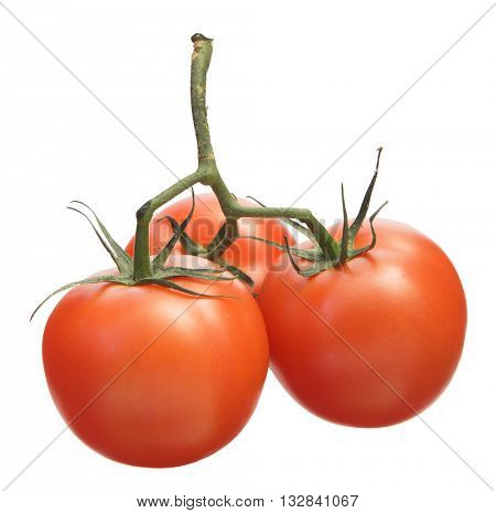 A BUNCH OF THREE BEAUTIFUL FRESH CHERRY TOMATOES ISOLATED ON WHITE BACKGROUND WITH REFLECTION
