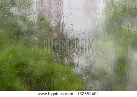 Background from a streams and drops of water on window pane and blurred foliage through the glass during a downpour