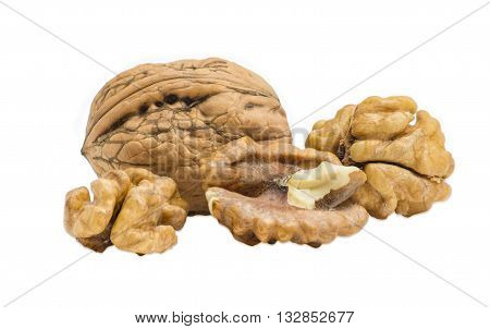 One walnut in their shell and several shelled kernels closeup on a light background