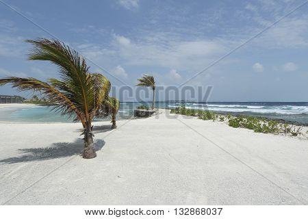 wind abd waves in maldives white sand beach