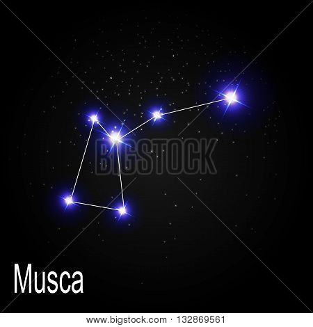 Musca Constellation with Beautiful Bright Stars on the Background of Cosmic Sky Vector Illustration EPS10