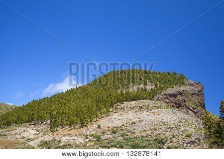 Inland Gran Canaria, Montana De Artenara