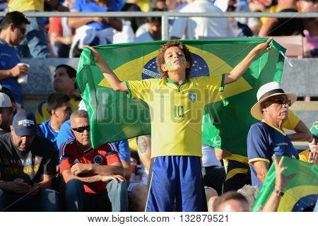 Boy Soccer Fan With Flag During Copa America Centenario