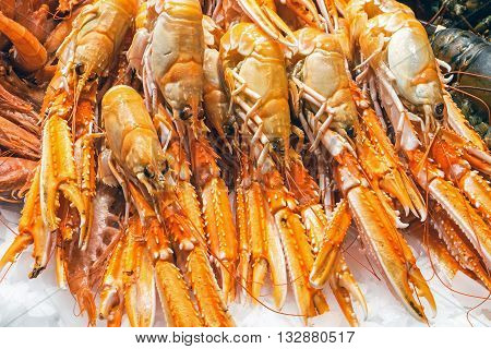 Fresh prawns for sale at the famous Boqueria market in Barcelona