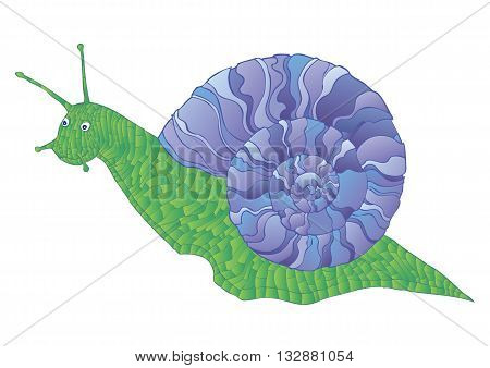 Snail isolated on white background. Vector illustration.