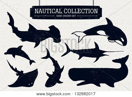 Hand drawn nautical collection of fish and sea inhabitants on white background. Dolphin white shark killer whale cachalot hammer-head swordfish and ramp.