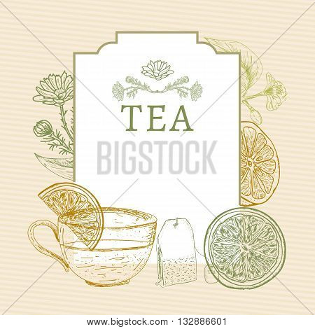 Tea time tea ceremonylemon mug of tea herbs vintage sketch vector