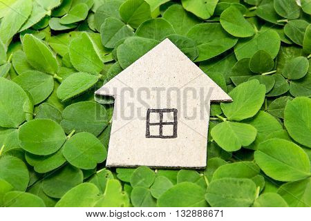 Cardboard house on the clover leaves. Building environmentally friendly housing