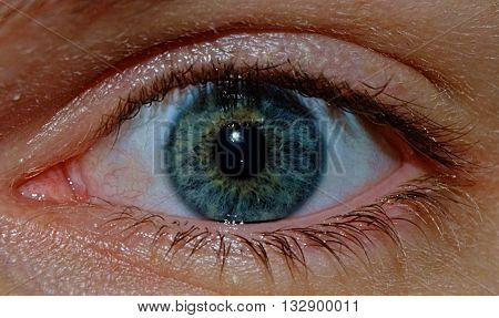 A close up image of a male's blue eyeball