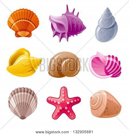 Colorful tropical shells and mollusks underwater icon set