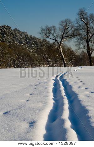 Ski-Track