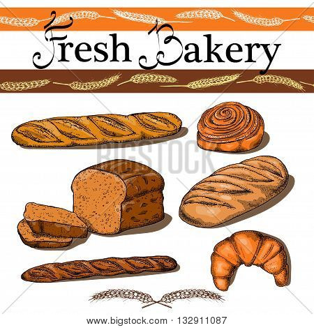 Set Of Hand Drawn Food: Bread, French Baguette, Croissant And Bun. Vector Illustration, Isolated On