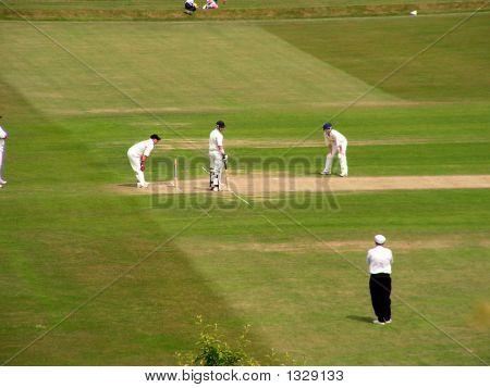Man Playing Cricet Sport England Game British