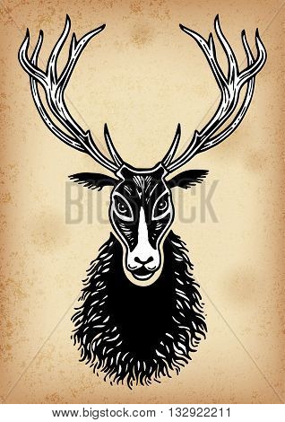 Set of hand drawing ink black and white deer face, paw, footprint of an animal, Vector illustration. Line art. Isolated.