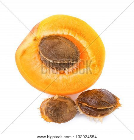 Apricot kernels with fruit isolated on white background. Closeup apricot kernel.