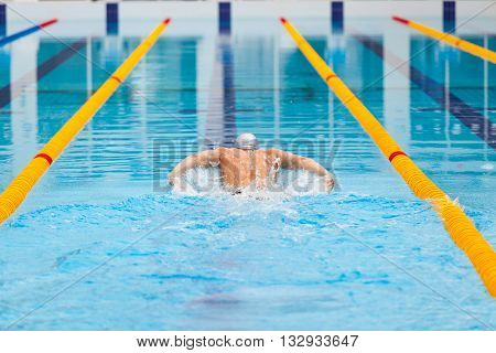 dynamic and fit swimmer in cap breathing performing the butterfly stroke.
