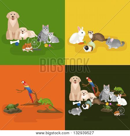 Home pets set, cat dog parrot hamster ferret, cartoon vector illustration, domesticated animals