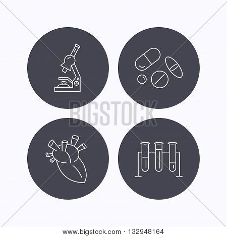 Microscope, medical pills and heart icons. Lab bulbs linear sign. Flat icons in circle buttons on white background. Vector