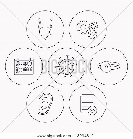 Virus, urinary bladder and ear icons. Medical mirror linear signs. Check file, calendar and cogwheel icons. Vector