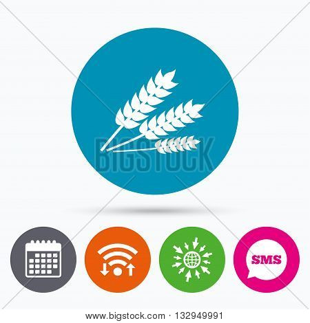 Wifi, Sms and calendar icons. Agricultural sign icon. Gluten free or No gluten symbol. Go to web globe.