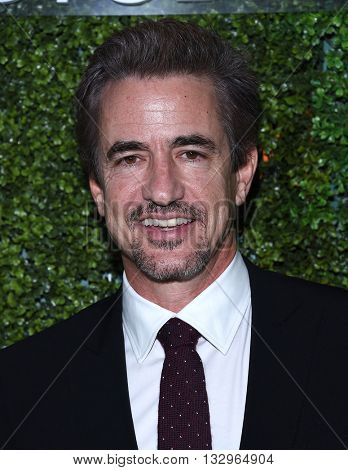 LOS ANGELES - JUN 02:  Dermot Mulroney arrives to the 2016 CBS Summer Soiree  on June 02, 2016 in Hollywood, CA.