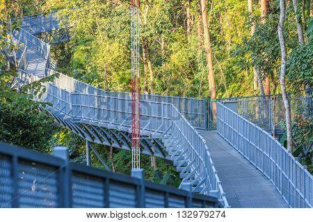 Canopy walks at Queen sirikit botanic garden Chiang Mai Thailand