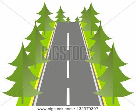 Grey road with green fir on the roadside, vector illustration