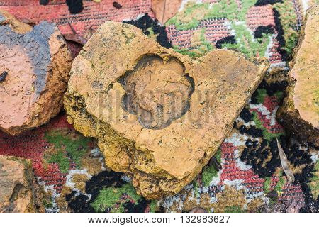 The Stamp On Old Baked Clay Brick, Old Style Baked Clay Brick