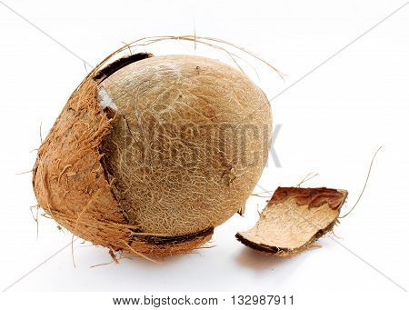 Coconut isolated on a white background close up