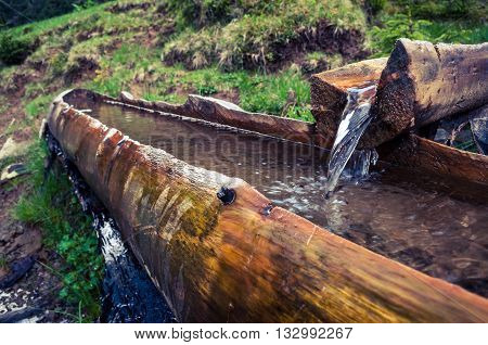 A Source In The Mountains In A Wooden Trough