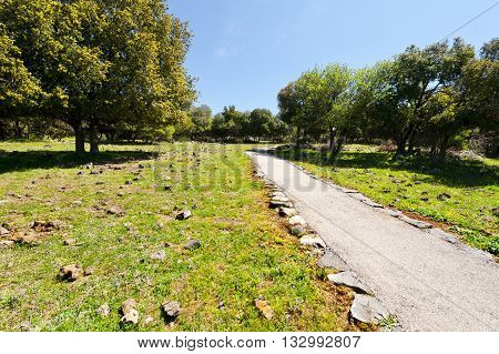 Park on the Golan Heights in Israel