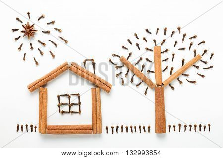 Concept cooking. The idea of a figure made of spices. House, sun, tree and grass made of cinnamon sticks, cloves and star anise isolated on white background