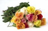 stock photo of one dozen roses  - bouquet of a dozen long stemmed mixed roses the signifies love beauty compassion affection caring giving - JPG