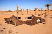 stock photo of sahara desert  - bedouin camp in the sahara desert morocco - JPG