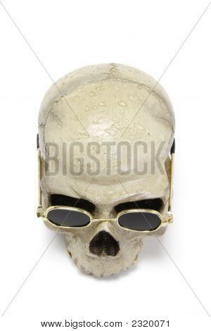 Skull With Sun Glasses