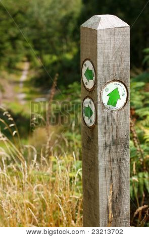 Forestry bridlepath post
