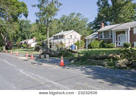 Hurricane Irene Damage