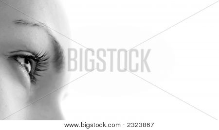 Women'S Eye - Looking Forward.Isolated On White.
