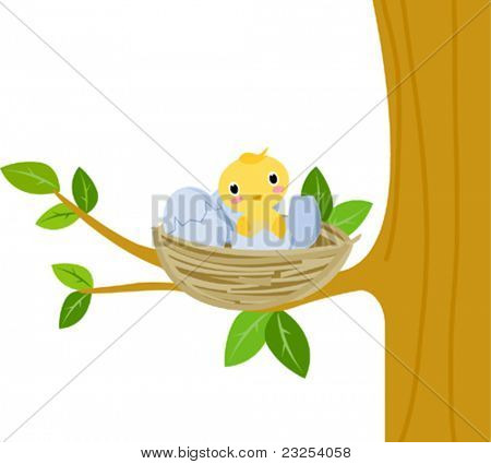 Nest with baby birds