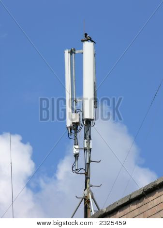 Gsm Network Antennas